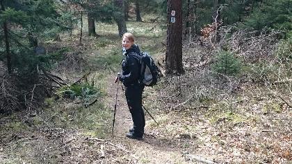 Kleine Zwischenwege parallel der großen Waldwege.