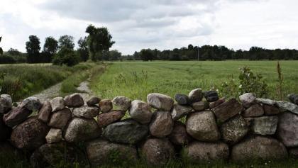 Weideumzäunung in Schweden