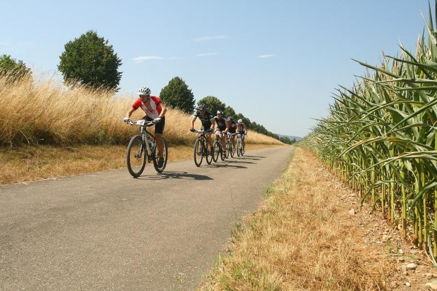 Bodensee Megathlon Radolfzell Mountainbike