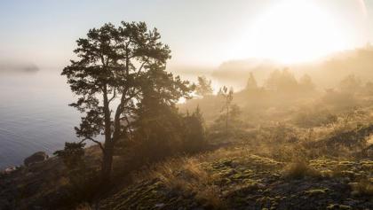 Blick über die südschwedische Landschaft