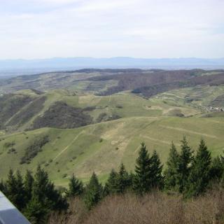 Blick vom Eichelspitzturm