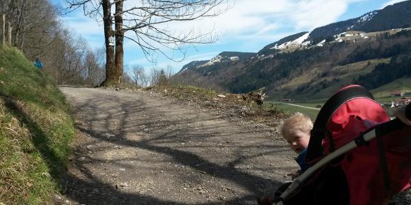 Auf dem Weg hinauf zur Schneidberg-Alpe.