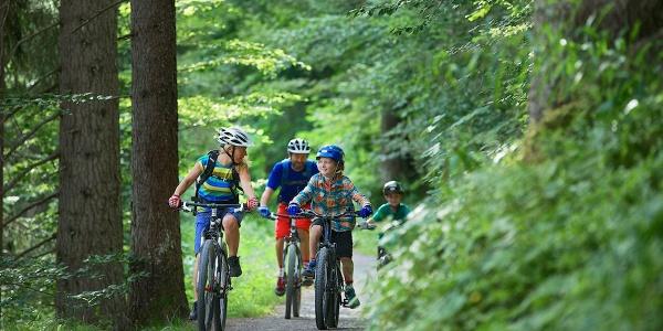 Biken durch den Flimserwald