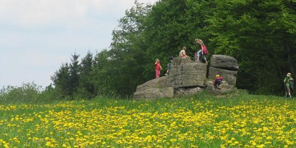 am Ketzerstein (24.05.2010)