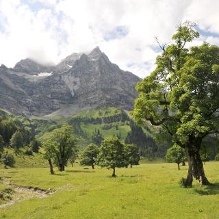 Am Themenweg zur Eng-Alm erfährt man einiges über die Geschichte des Großen Ahornbodens, der Landwirtschaft und über den Naturpark Karwendel allgemein.