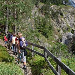 Der kurze Wanderweg an der Karwendelschlucht entlang eröffnet beeindruckende Ausblicke!