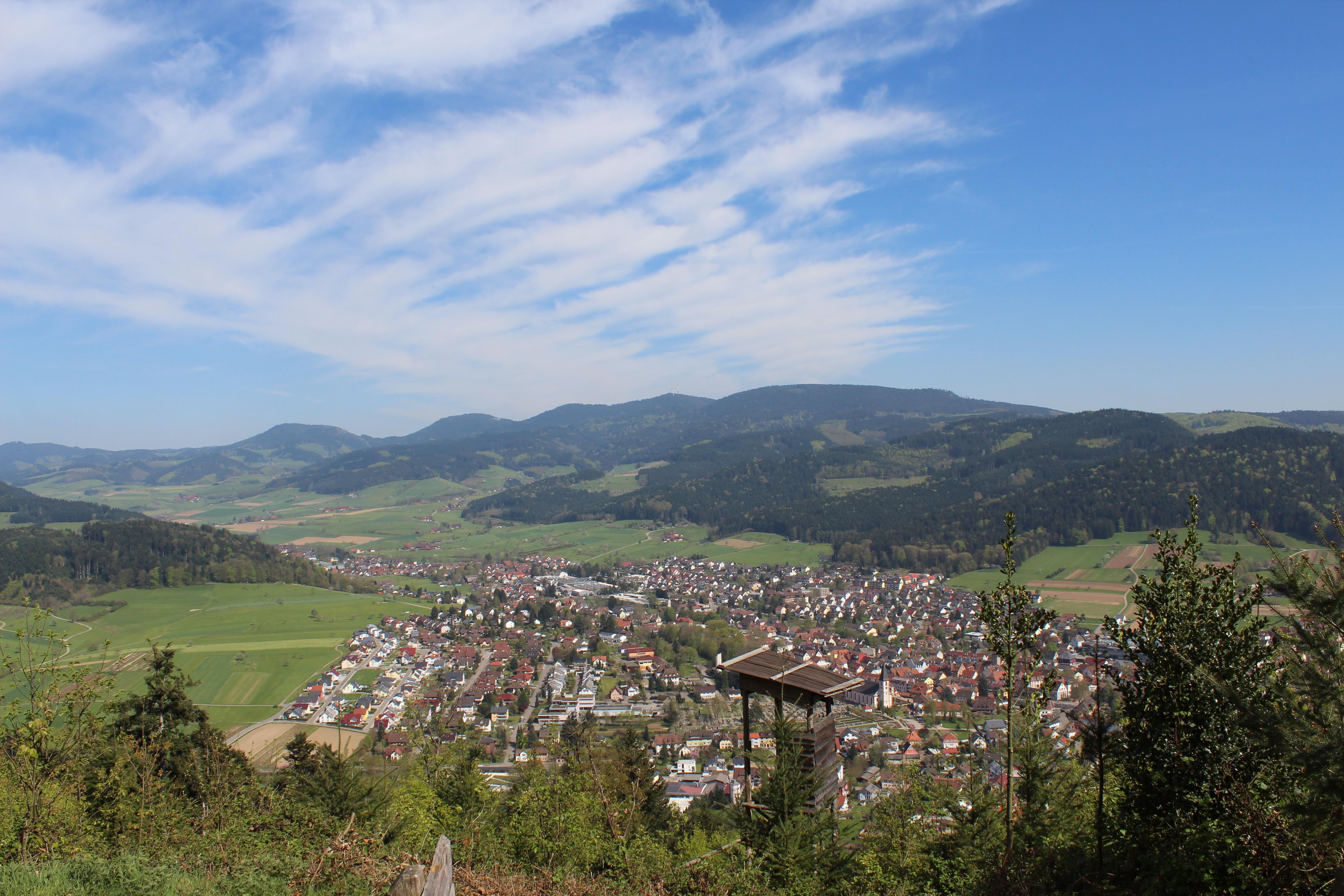 Badwaldblick