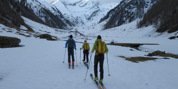Entlang des Kaserer Bachs Richtung Talschluss - bzw. direkt auf den Gipfel zu. Selten, dass man auf einer Skitour derart geradlinig  aufs Ziel zusteuert.