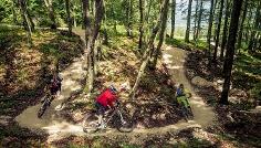 Flow Trail Wäldchen