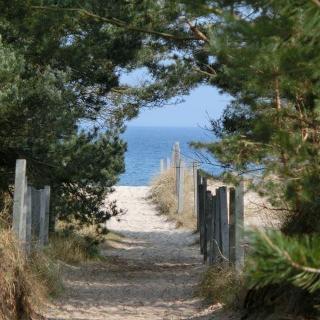 Strandabschnitt bei Prora
