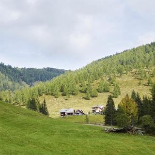 Die Feldpannalm-Runde spannt einen beeindruckenden landschaftlichen Bogen von hochalpinen Panoramaplätzen hin zum abgeschiedenen, von Almweiden geprägten Talkessel.