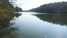 Rundtour beim Argenstausee - Westallgäuer Wasserweg 27