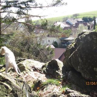 Fels über Waldhölzbach
