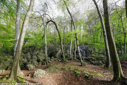 Felsenmeer Hemer - Naturerlebnisweg am Stadtrand von Hemer
