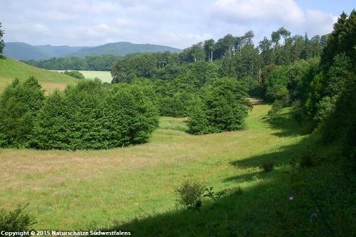 Orlebachtal - Naturerlebnisweg zwischen Balve und Sorpesee