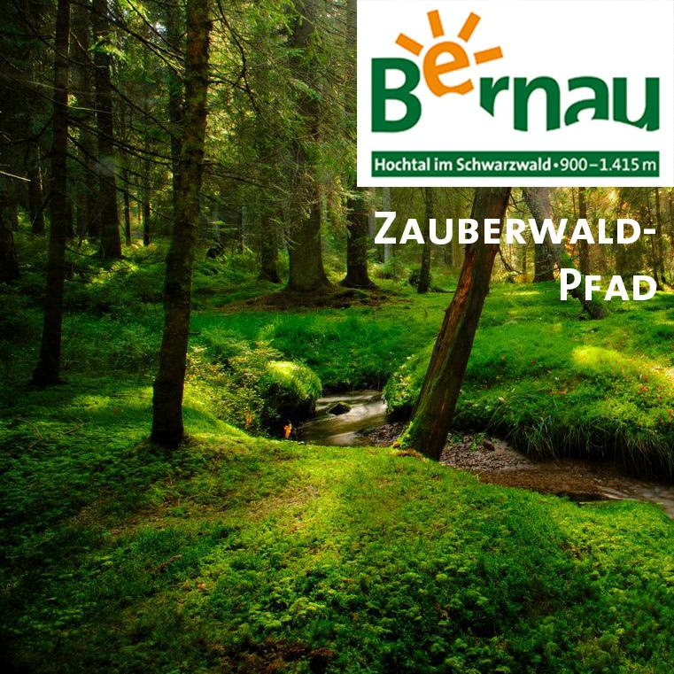 Bernau im Schwarzwald: Zauberwald-Pfad
