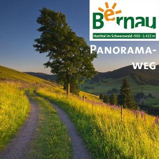 Bernau Wandern auf dem Panoramaweg im Bernauer Hochtal