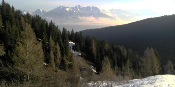 im Aufstieg: Blick Richtung Karwendel