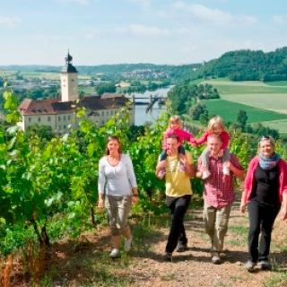 Gundelsheim - Weinberge bei Schloss Horneck