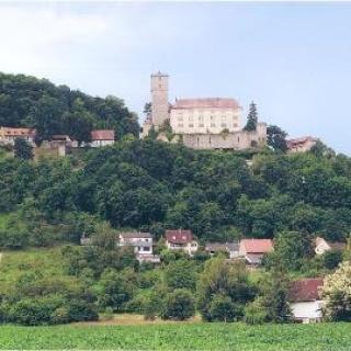 Haßmersheim - Burg Guttenberg mit Adlern