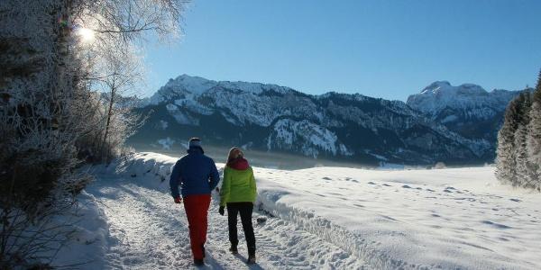 Wanderung Richtung Mühlberg
