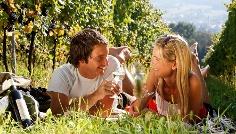 Picknicken im Weingarten