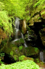 Foto Lichtenhainer Wasserfall
