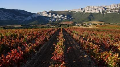 Blick auf die Sierra Cantabria