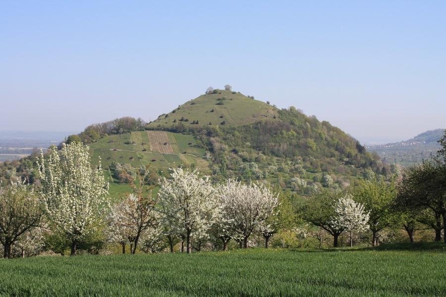 Natur- und Kulturlehrpfad  Limburg