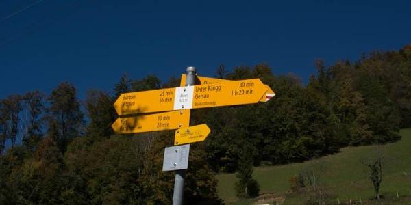 Der Lehenweg verläuft teilweise auf dem Waldstätterweg.