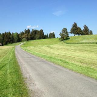 Auf dem Weg zur Hirschau Allgäu Impressionen