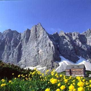 Die Falkenhütte vor der Herzogkante und den Lalidererwänden