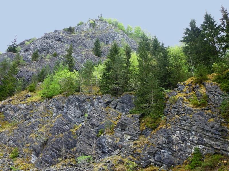 Stillgelegter Basalt-Steinbruch unter dem Nordgipfel des Hohenstoffeln