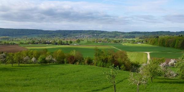 Landschaftspfad Hardtseen: Blick nach Randegg