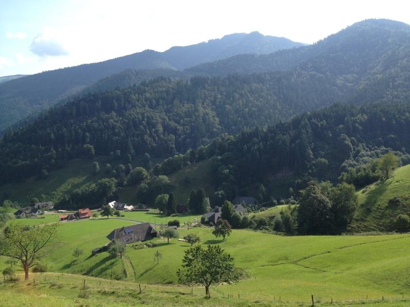 Rennrad Tour durch das kleine Wiesental von Badenweiler aus