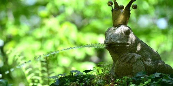 Märchenhaftes im Garten