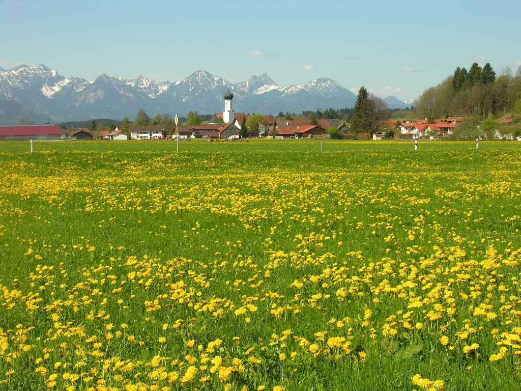Bayerniederhofen (Christel Blankenstein)
