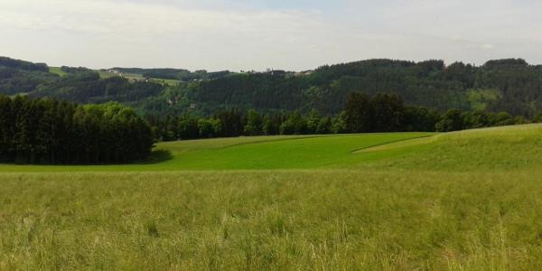 Blick nach Waldkirchen am Wesen
