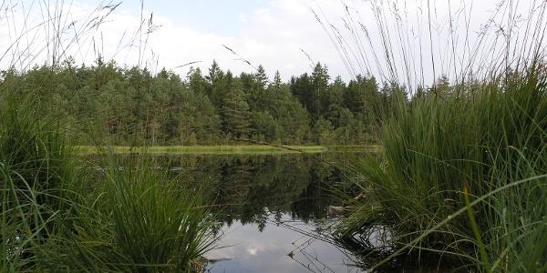 """""""Grundloser See"""" bei Gstadt"""