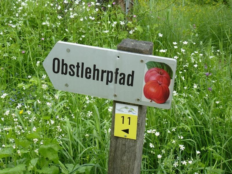 Obstlehrpfad Frickenhausen