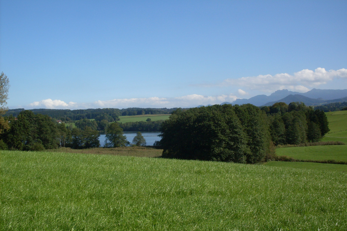 Blick auf den Tinninger See