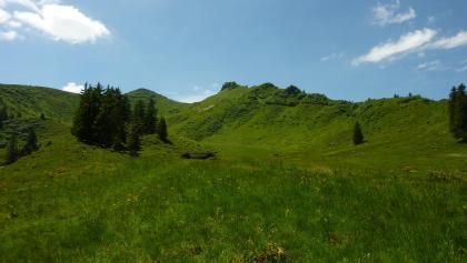 Gipfel des Riedbergerhorns