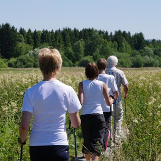 Nordic Walking im Moor