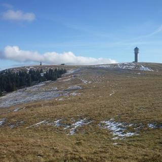 Blick zum Feldberg Turm