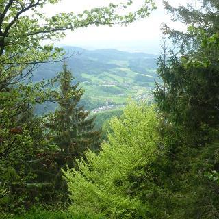 Ausblick in der Nähe des Kranzkopfs