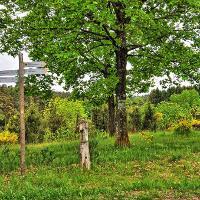 Naturschutzgebiet Geisert
