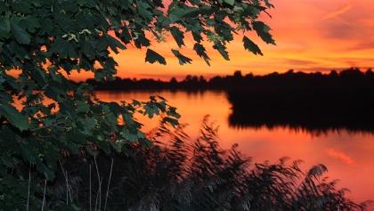 Abenddämmerung in der Teichlandschaft.