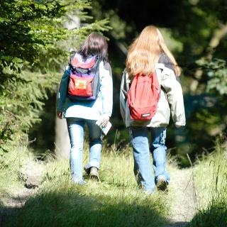 Wandern rund um Föckinghausen