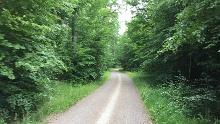 """Herrenberg Rad-Tour 5 Zur Weiler Hütte, """"Eine Prise Waldluft"""""""