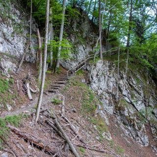 Steig in Tirol